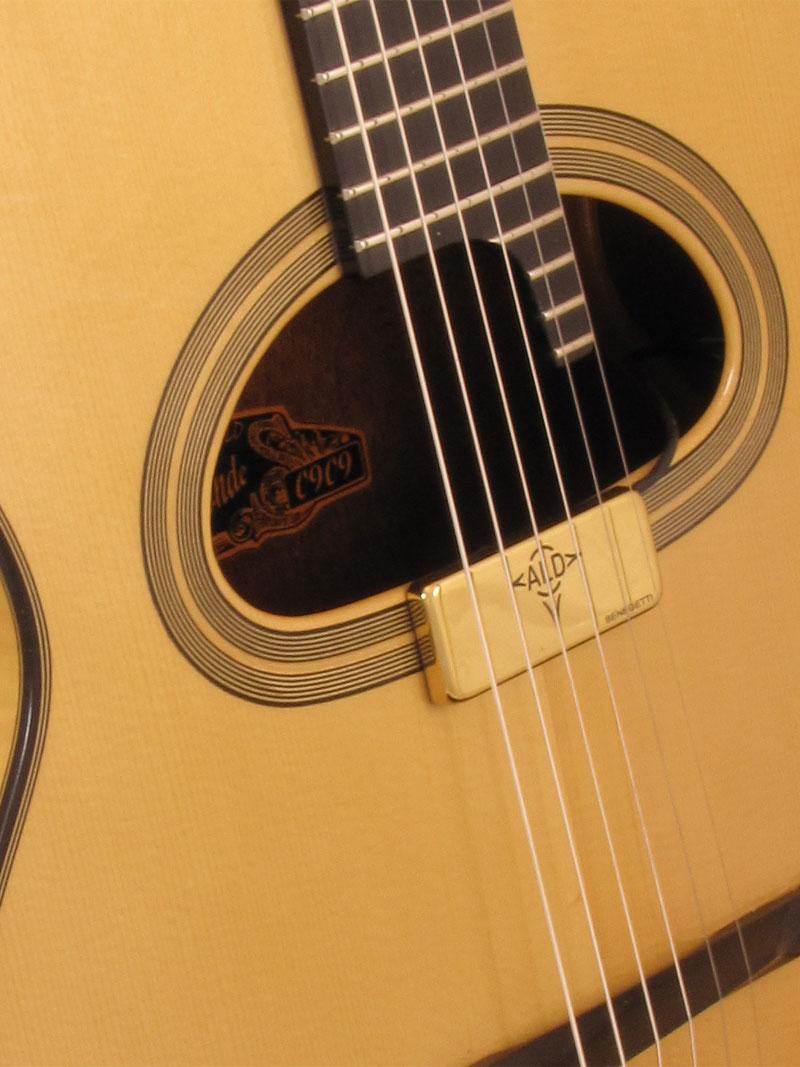 Guitare D-Hole